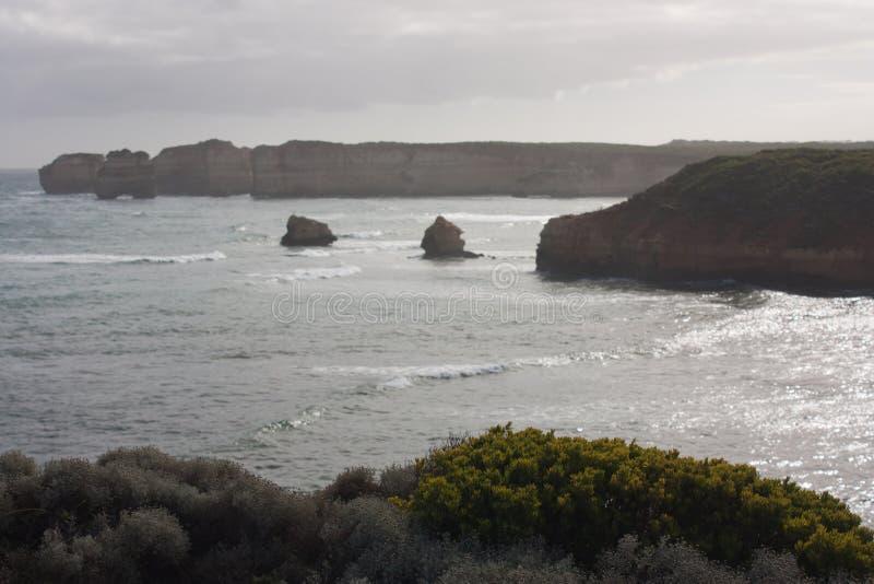 Arbusto verde nella priorità alta nella baia delle isole sulla grande strada dell'oceano in Australia immagine stock