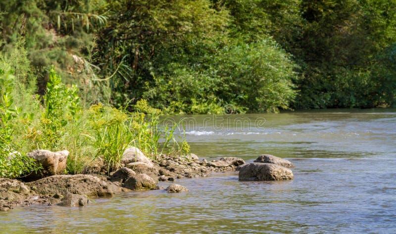 Arbustos ao longo dos bancos, Jordan River imagem de stock