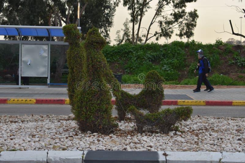 Arbustos verdes en la forma de la gente con un perro y los transeúntes en la parada de autobús en Herzelia, Israel - fotografía de archivo
