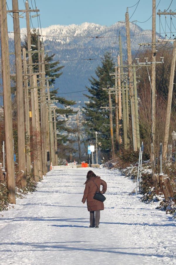 Arbutus Greenway το χειμώνα στοκ εικόνα με δικαίωμα ελεύθερης χρήσης