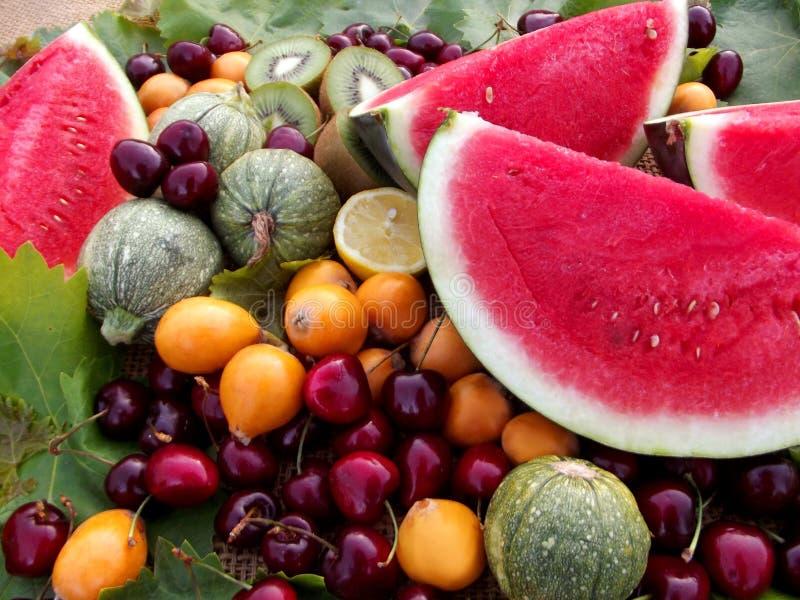 Arbuz i inny owoc pokaz zdjęcia royalty free