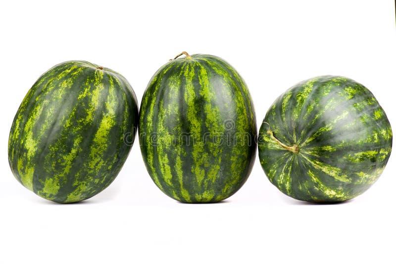 arbuzy Grupa odizolowywająca dalej słodki arbuz zdjęcie royalty free