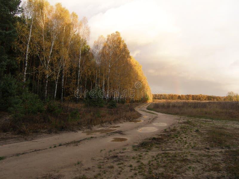 Arc-en-ciel au-dessus de la forêt après la pluie Automne tôt La route entrant dans la distance photo libre de droits