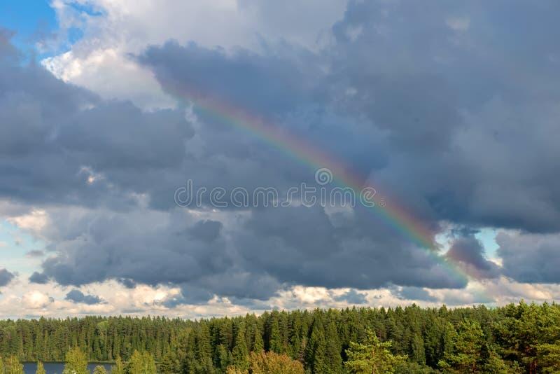 Arc-en-ciel au-dessus de la for?t photographie stock