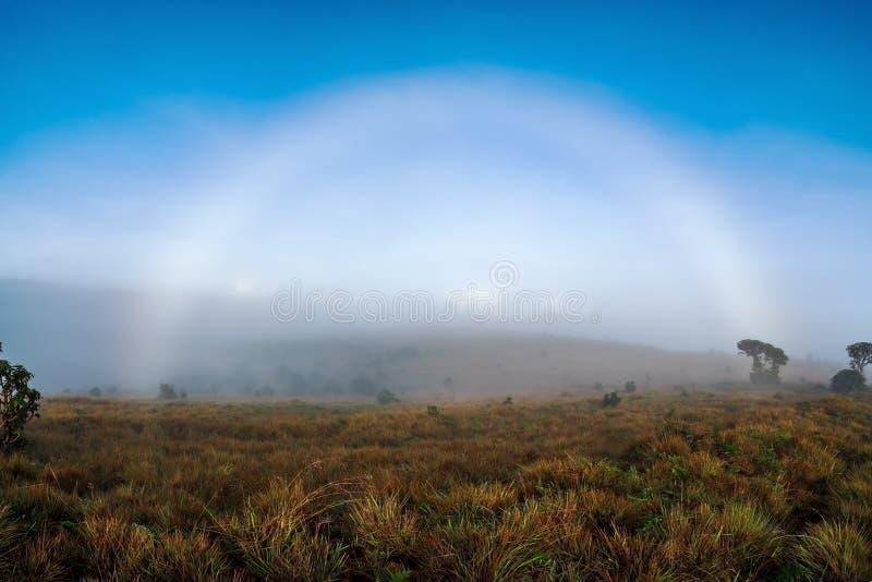 Arc-en-ciel sur le pré brumeux pendant le matin Vue de Lanscape avec le ciel bleu lumineux photo stock