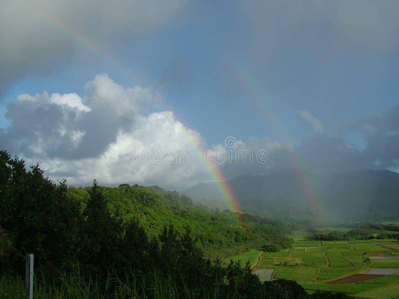 Arc-en-ciel tropical photographie stock libre de droits
