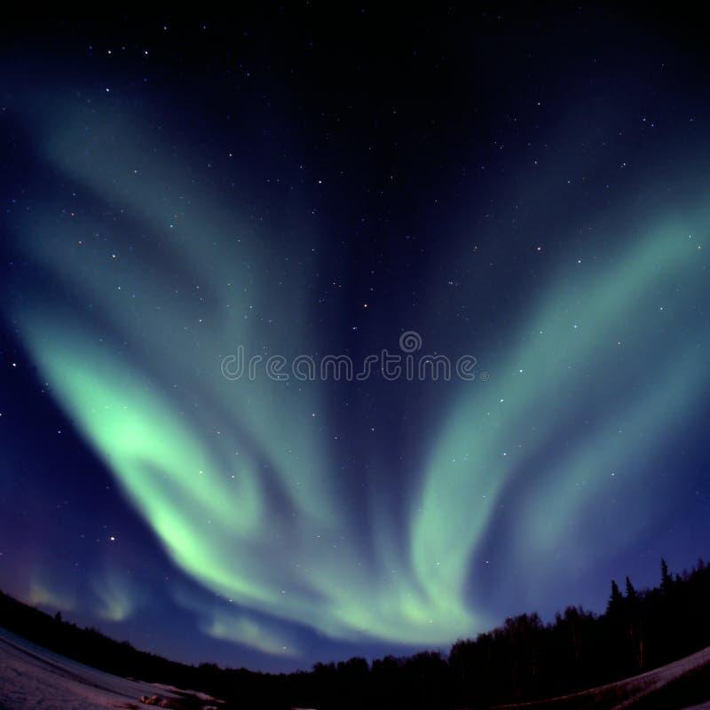Arc en forme de V de borelis de l'aurore photographie stock libre de droits