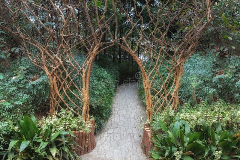 Arc naturel fabriqué à partir de le bois photos libres de droits