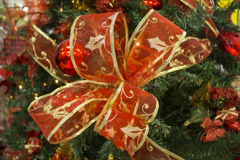 Arc rouge de ruban sur la branche d'arbre verte de sapin Photo de fin d'ornement d'arbre de Noël avec l'endroit des textes images stock