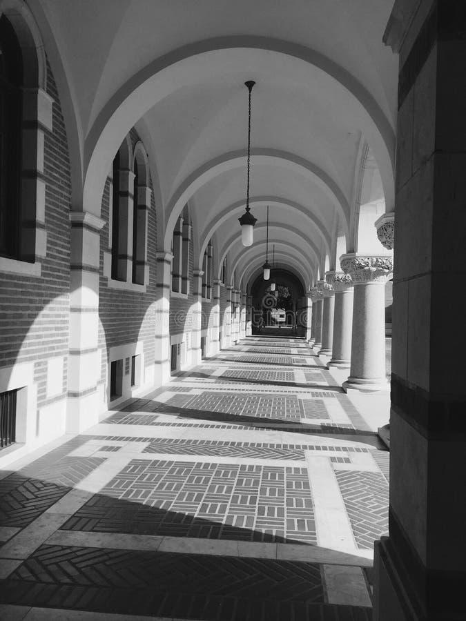Arcade de Rice University photos libres de droits