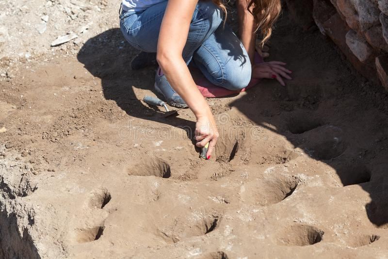 archäologie Archäologe, der an der archäologischen Fundstätte arbeitet stockbilder
