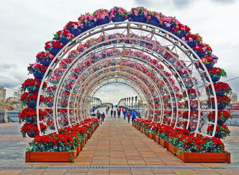 Arché festivi del fiore immagine stock libera da diritti