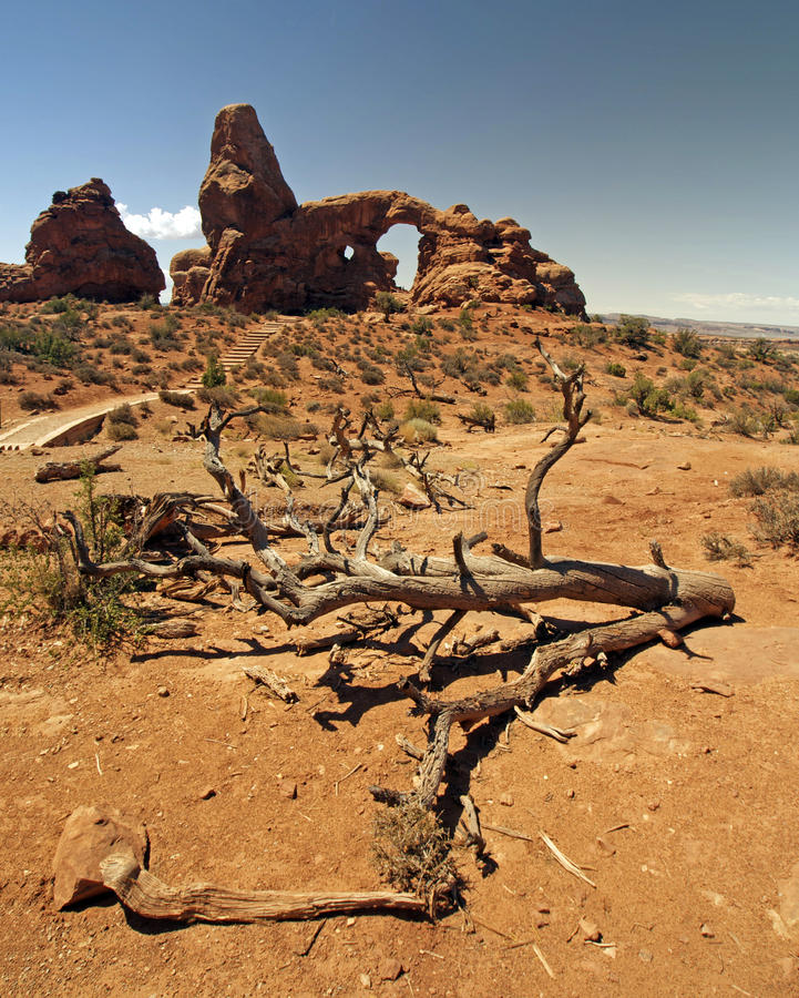 Free Arch And Desert Scene In Arches National Park Royalty Free Stock Images - 12943909