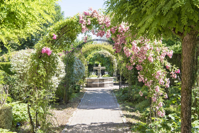 Arch with roses in beautiful garden royalty free stock image