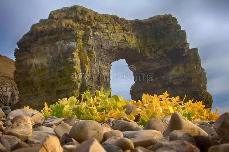 Arch of Steller. Massive stone arch. Arch of Steller (in honor of zoologist Georg Steller). Massive stone arch on shore of Pacific ocean. Bering Island stock images