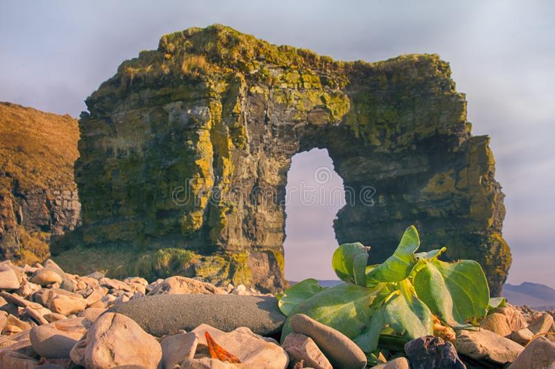 Arch of Steller. Massive stone arch. 20 m on shore of Pacific ocean. Bering Island. Commander Islands, geological formation, natural wonder, freak of nature royalty free stock photos