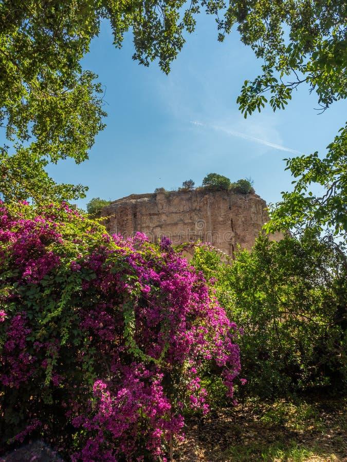 Archaeological Park of Baia, Temple of Venus stock image