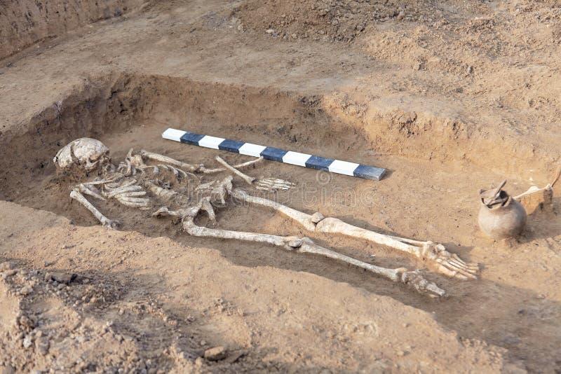 archaeological park för paphos för cyprus utgrävningkato Mänskliga restben av skelettet, skallar i jordningen, med artefacts som  royaltyfria foton