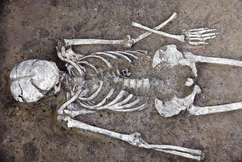 archaeological park f?r paphos f?r cyprus utgr?vningkato M arkivbild