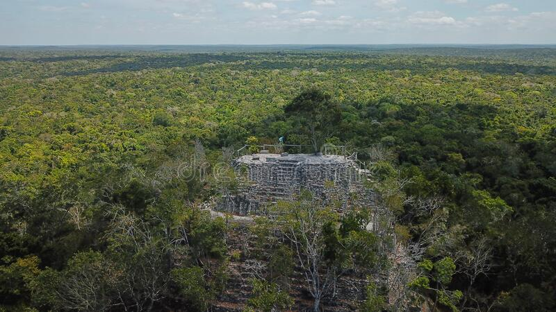 Archaeological Site: El Mirador, the cradle of Mayan civilization and the oldest mayan city in history. Buried within the furthest reaches of the Petén jungle stock photos