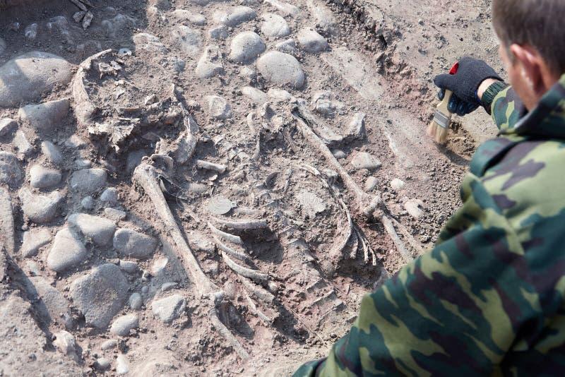 archaeological utgrävning Händerna av arkeologen med hjälpmedel som för forskning på mänskliga ben, del av skelettet från groen royaltyfria foton