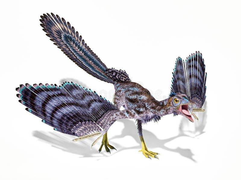 Archaeopteryxdinosaurier lokalisiert auf weißem Hintergrund stock abbildung