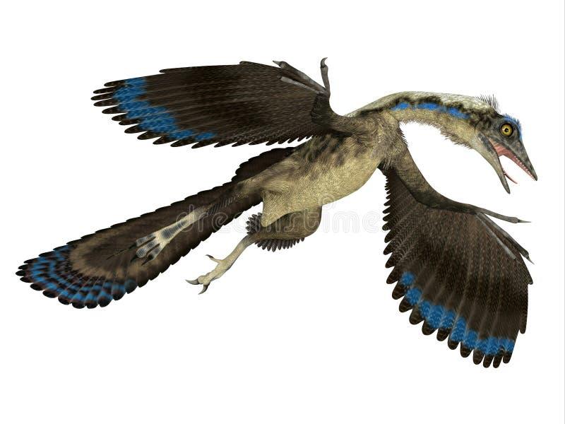 Archaeopteryxreptil i flykten vektor illustrationer