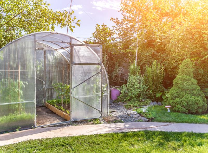 Arched small greenhouse on private backyard with sun flare stock photo