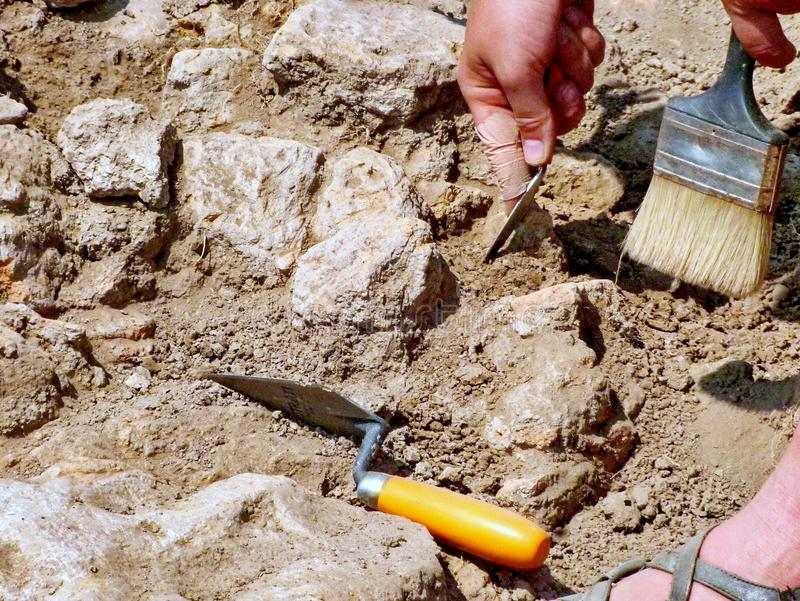 Archeologen op het werk royalty-vrije stock afbeelding