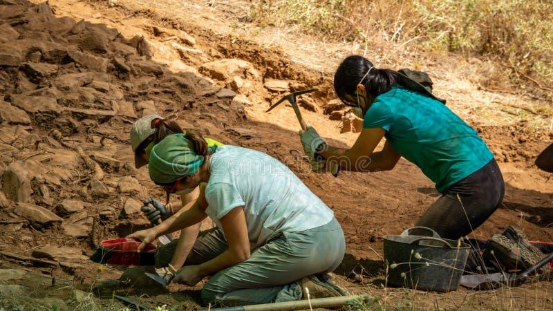 Archeologenvrouwen die in antiek fort, Zamora werken royalty-vrije stock afbeelding