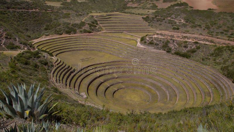 Archeological περιοχή maras Moray στο Περού στοκ φωτογραφία με δικαίωμα ελεύθερης χρήσης