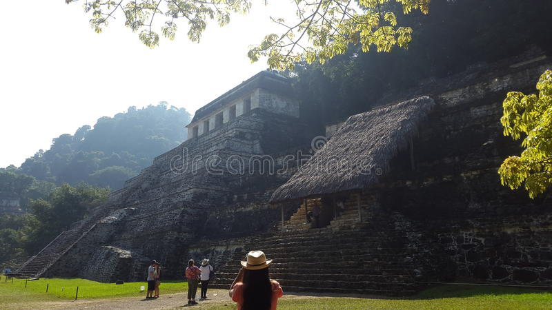 `Archeological Zone`. One of the biggest ancient Mayan cities where the great Pakal use to live. Palenque, Chiapas. Mexico royalty free stock image