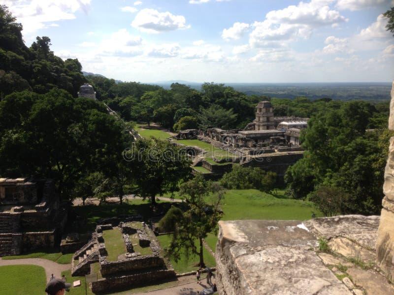 archeologiczna strefa Palenque, Chiapas fotografia royalty free