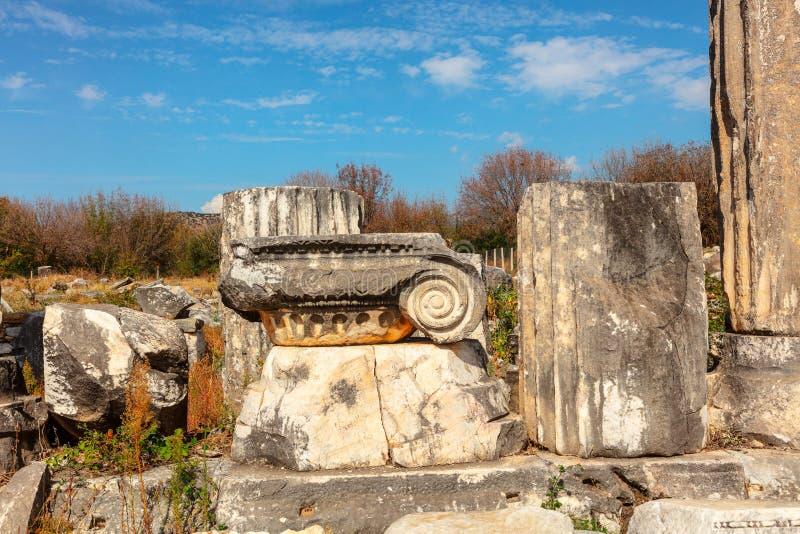 Archeologiczny miejsce Aphrodisias w Aydin prowincji Turcja obraz stock