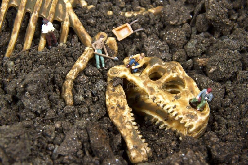 Archeology stock image