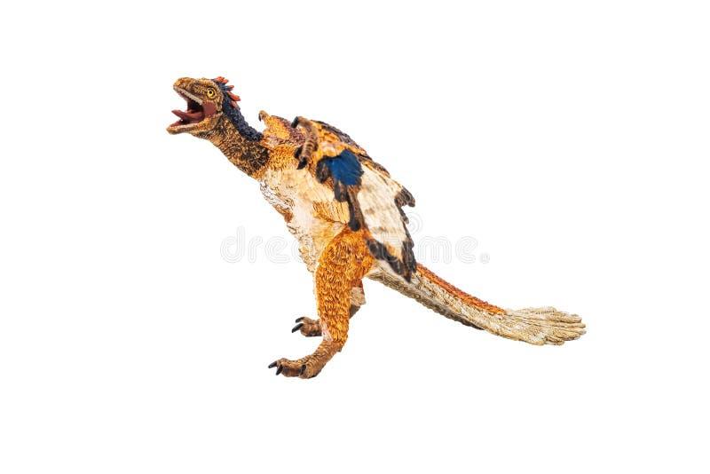 Archeopteryks, dinosaur na białym tle zdjęcie royalty free