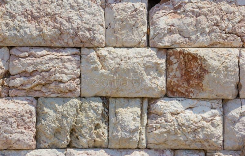 archeopteryks stary granit ściany tło obraz royalty free