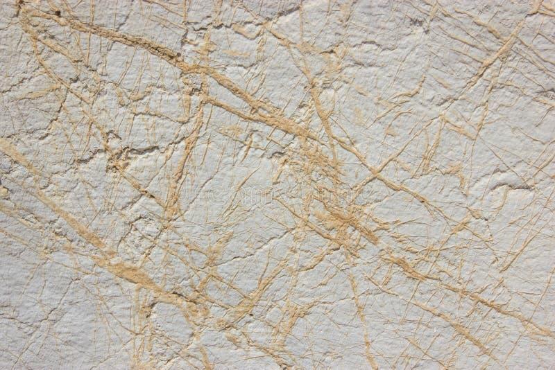 archeopteryks stary granit ściany tło zdjęcie stock