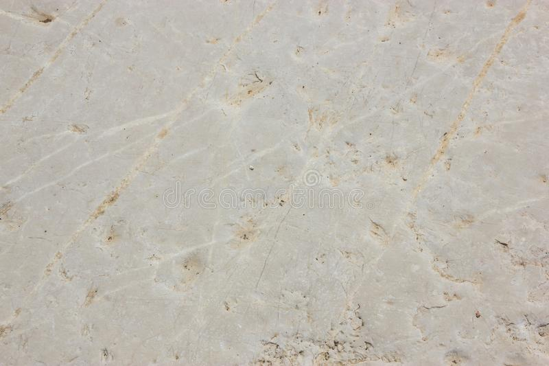 archeopteryks stary granit ściany tło obraz stock