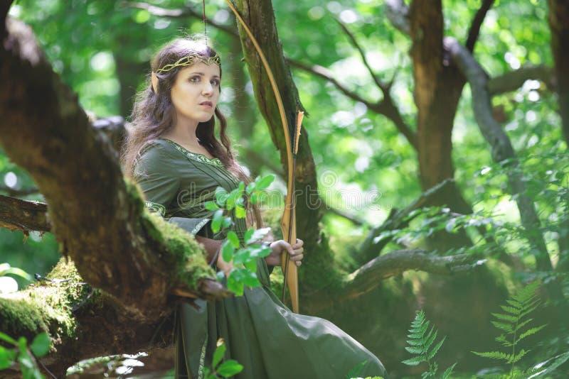 Archer d'Elf avec un arc photo libre de droits