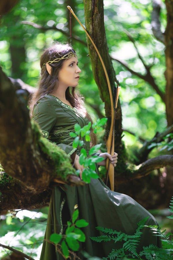 Archer d'Elf avec un arc photos libres de droits