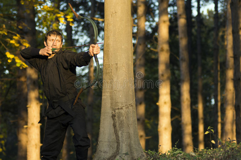 Archery in forest stock photo