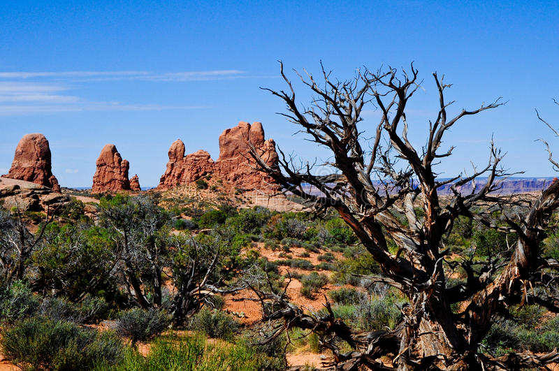 Download Arches National Park stock image. Image of blue, national - 14858935