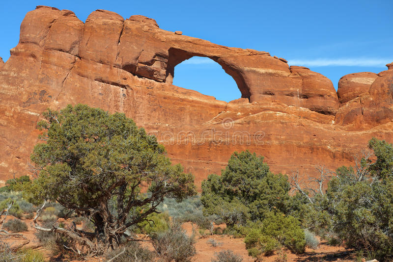 Arches National Park, USA. Variety of geological formations in Arches National Park, Utah, USA royalty free stock photo