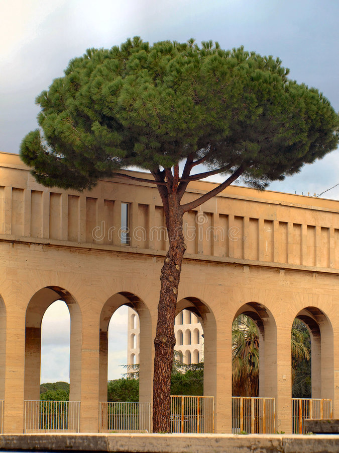 Arches and the pine tree stock photo