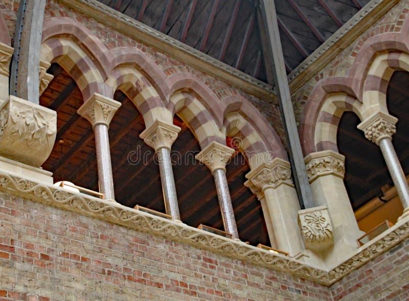 Archi decorati nel tetto del museo di storia naturale di Oxford fotografia stock libera da diritti