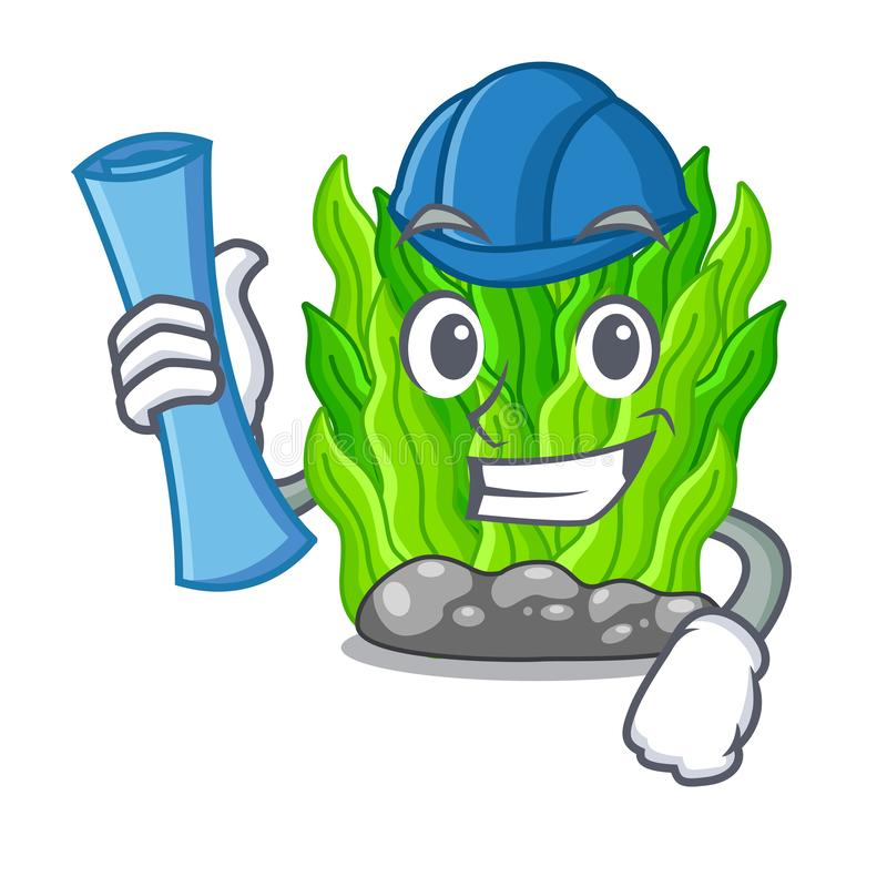 Architect green seaweed isolated with the character vector illustration