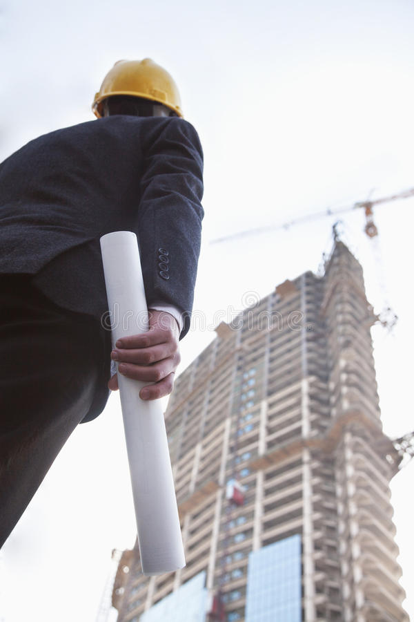 Architect holding blue print and looking up, low angle view royalty free stock images