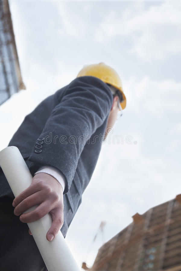 Architect holding blue print and looking up, low angle view stock photo