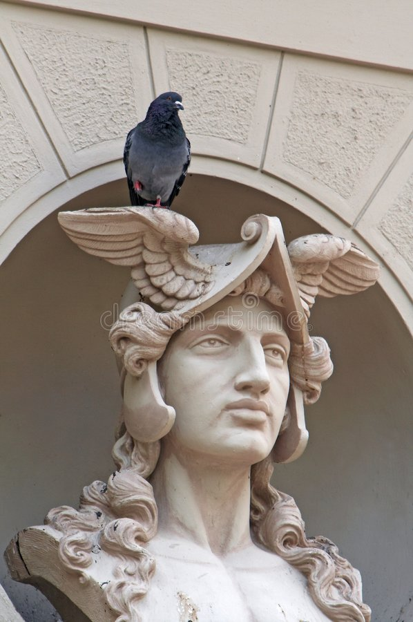 Architectonic detail, Mercury bust. With the pigeon stock photos